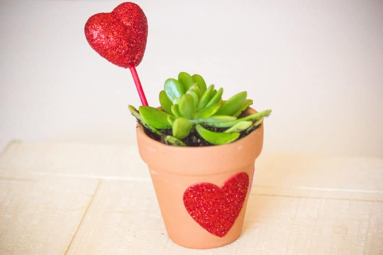 DIY Valentine's Craft for Kids – Let Love Grow Succulent Heart Flower Pot