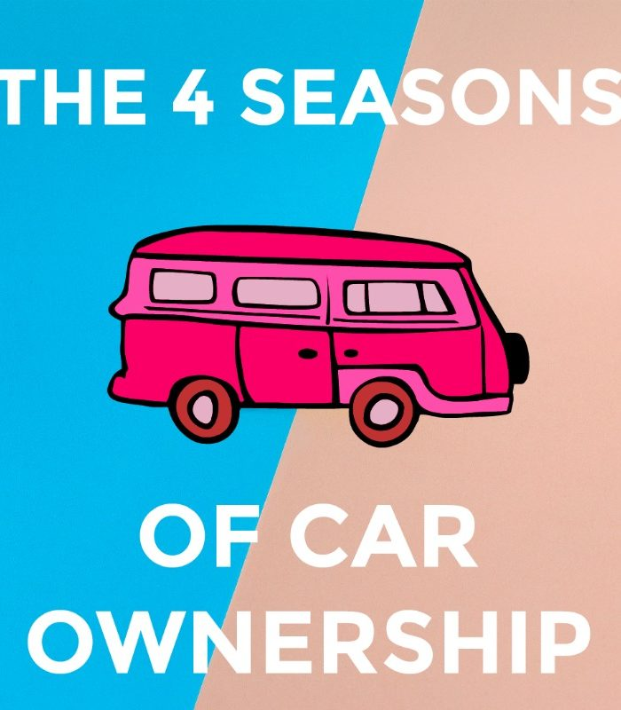 car ownership graphic