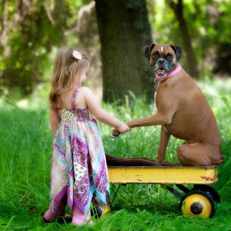 Top 5 Summer Activities Kids and Dogs Love