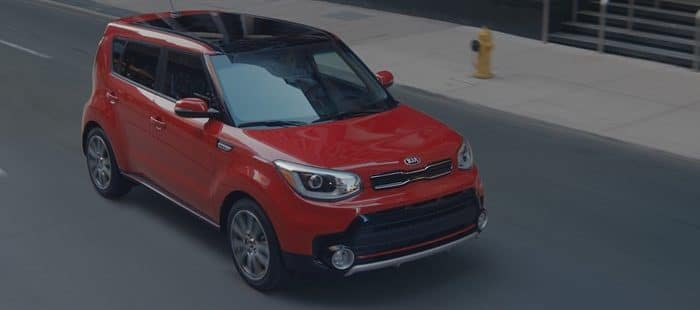 KIA MOTORS' MUSIC-LOVING HAMSTERS WELCOME A NEW MEMBER TO THE FAMILY IN MARKETING CAMPAIGN FOR THE TURBOCHARGED SOUL