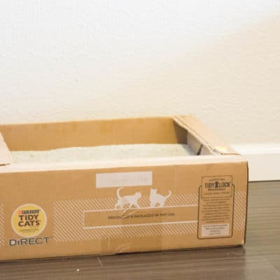 Tidy Cats Direct Disposable Litter Box