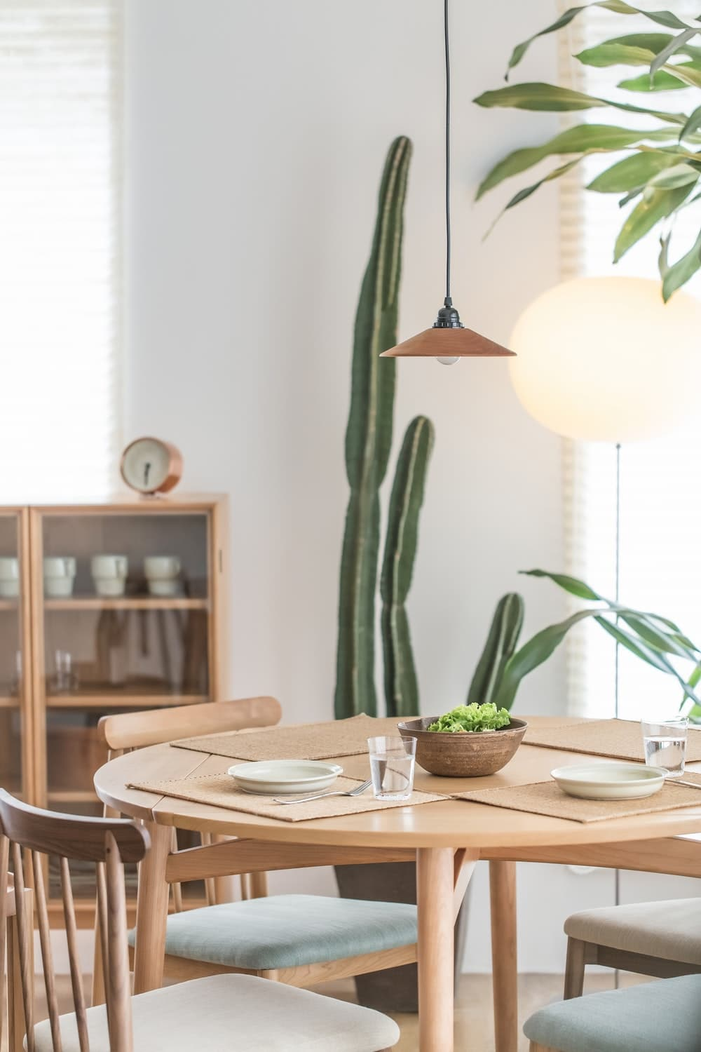 Mid Century Modern Dining Room with Cacti